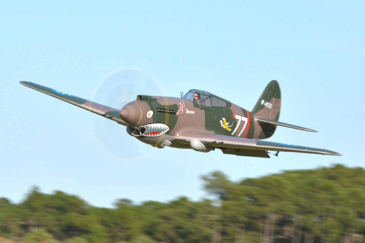 FMS P-40B Curtiss Warhawk Flying Tiger PNP - 140 cm