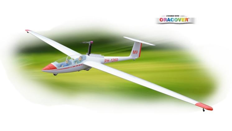Phoenix ASK-21 6,5 m - Segler