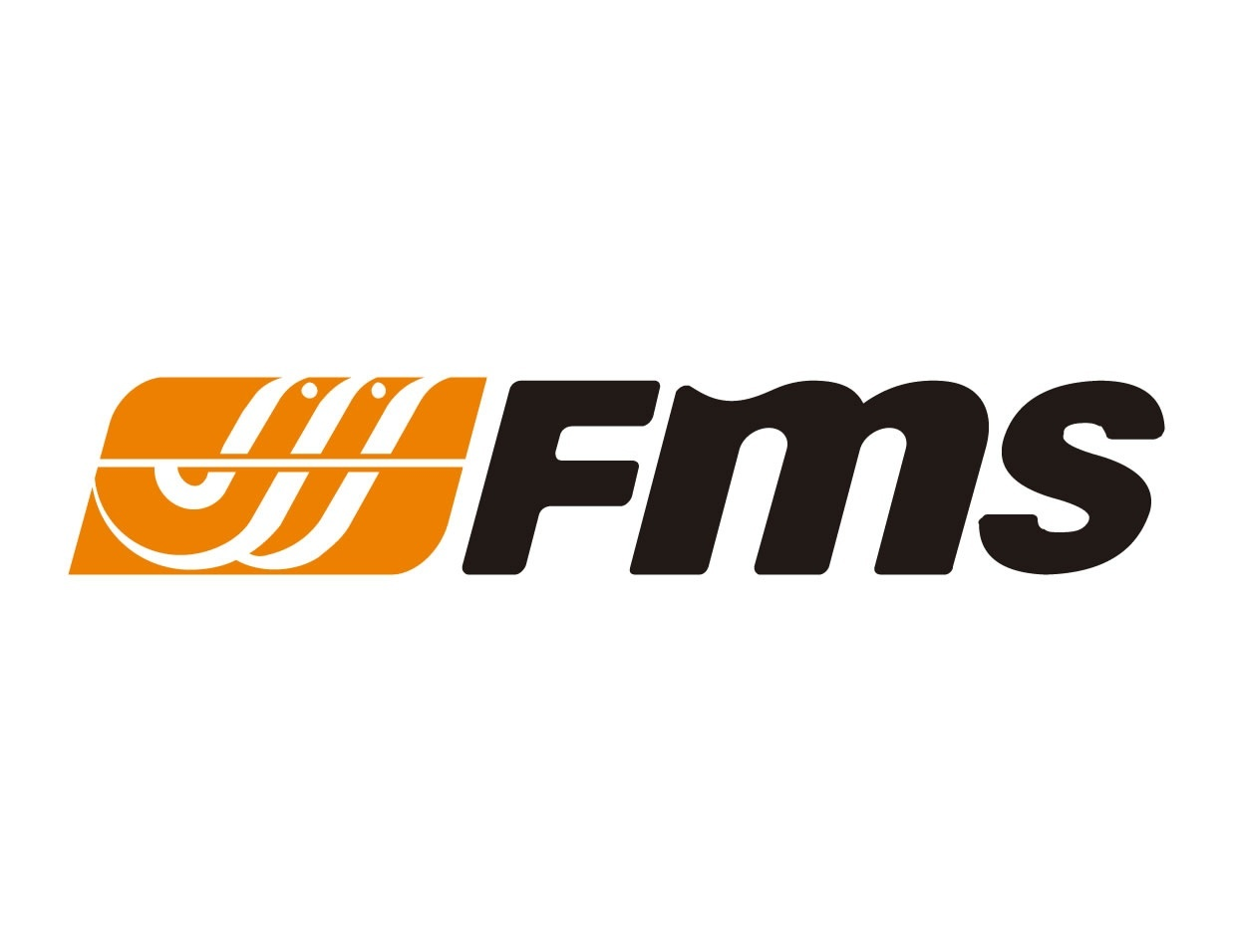 FMS Ersatzteile